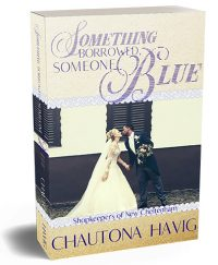 Something Borrowed, Someone Blue